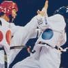 Spreekbeurt taekwondo