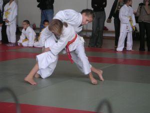Spreekbeurt Judo