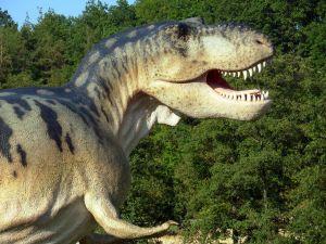 Spreekbeurt Dinosaurussen of Dinosauriërs