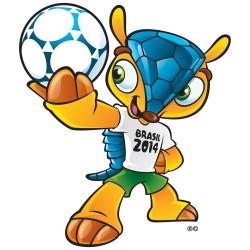 Spreekbeurt over het WK Voetbal