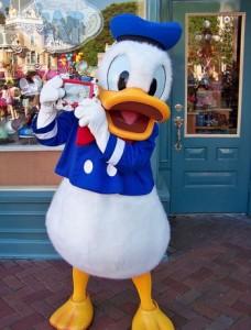 Donald duck spreekbeurt