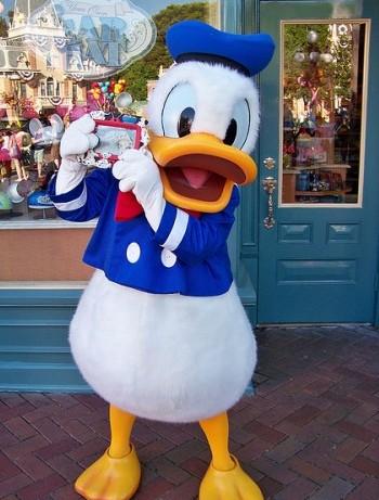 Spreekbeurt Donald Duck!