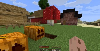Spreekbeurt Minecraft (de game)